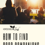How to Find Good Companions