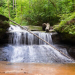 Image of Creation Falls in Georgia