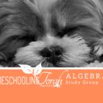 Algebra 1 Study Group