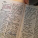 What Translation of the Bible Do You Use?