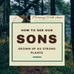How to See Our Sons Grown Up as Strong Plants
