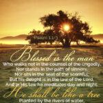 The Mark of a Godly Companion